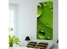 Adesivo murale Panoramico - Green