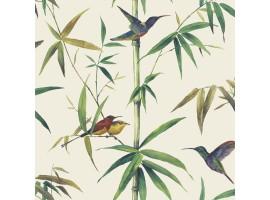 Carta da parati foresta colibrì crema