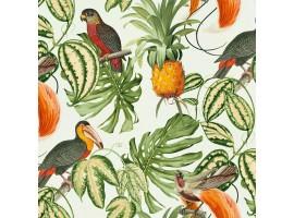 Carta da parati uccelli tropicali