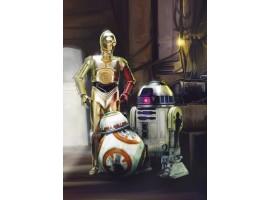 Fotomurale Star Wars ambientazione