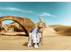 Fotomurale Star Wars droidi