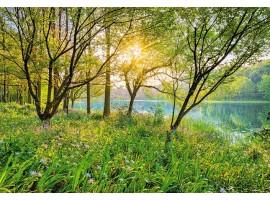 Fotomurale Spring Lake | cod. 8-524