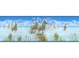 bordo adesivo cavalli