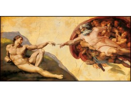 Creazione di Adamo di Michelangelo