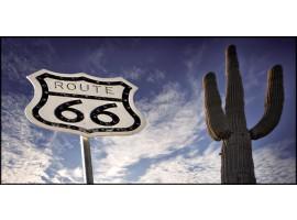 Cactus Route 66 | Quadro America su tela