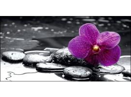 Quadro su tela Orchidea in Black