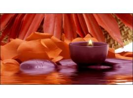 Quadro su tela Petali Arancio