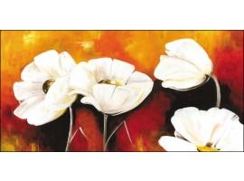 quadro papaveri bianchi