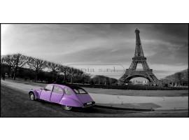 Tour Eiffel et voiture glicine | Quadro su tela