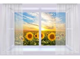 Trompe l'Oeil | Finestra sul campo di girasoli