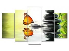 Farfalla zen (five)