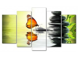 Farfalla zen (five in tela)