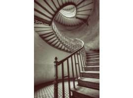 Fotomurale scale chiocciola