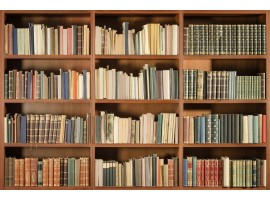 Fotomurale libreria