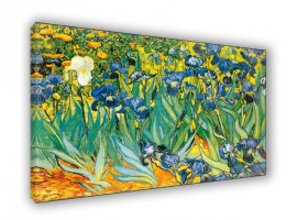 Iris | Quadro di Van Gogh