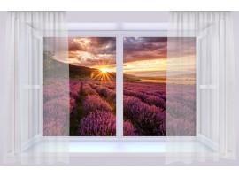 quadro effetto finestra su campo di lavanda