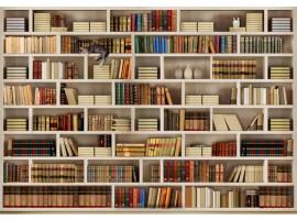 Biblioteca TNT