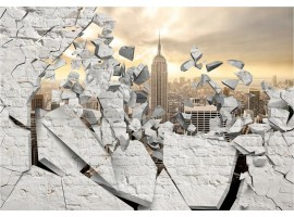 fotomurale muro su new york