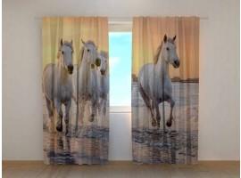 Tenda classica Cavalli sulla Spiaggia