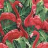 Carta da parati fenicotteri rossi