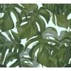 Carta da parati foglie tropicali