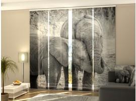 Tenda a 4 pannelli Elefanti