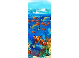 adesivo per porta acquario