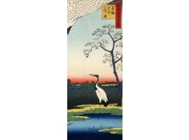adesivo per porta ibis
