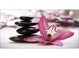 Quadro su tela Orchidea Viola