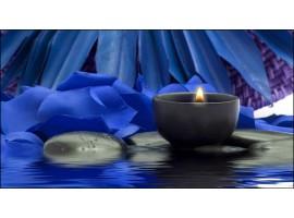 Quadro su tela Petali Blu