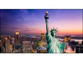 Statua della Libertà | Quadro America su tela