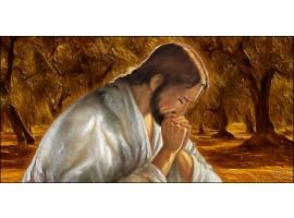 Quadro Gesù nell'Uliveto