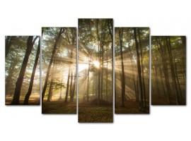 Raggi di sole (five in tela)