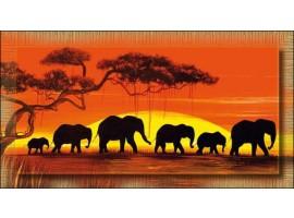 Quadro africano Savana