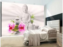 Buddha TNT