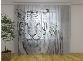 Tenda classica Tigre Bianca