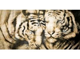 fotomurale design tigri