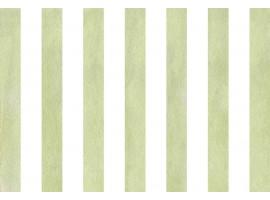 paraschizzi adesivo Righe Bianche e Verdi