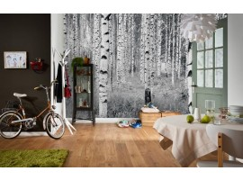 Woods | Ambientazione Fotomurale in TNT