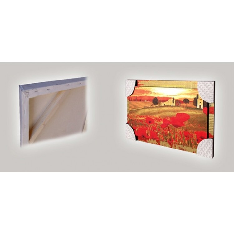 dettagli quadro in tela con cornice decorata