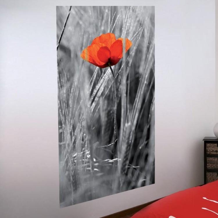 Adesivo murale Papavero rosso