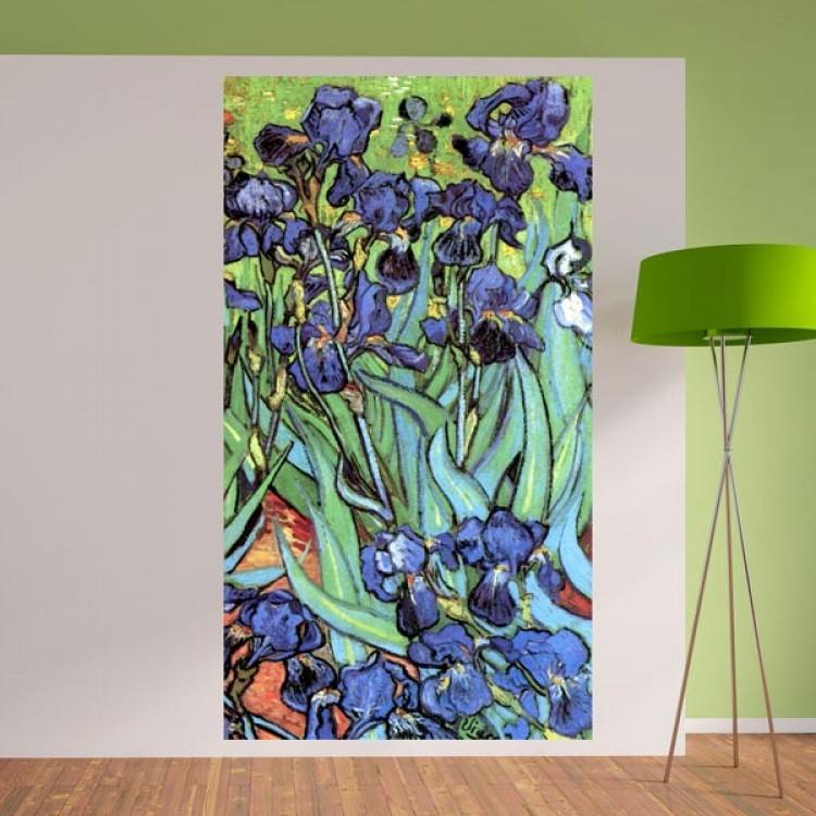 Iris di van Gogh (ambientazione)