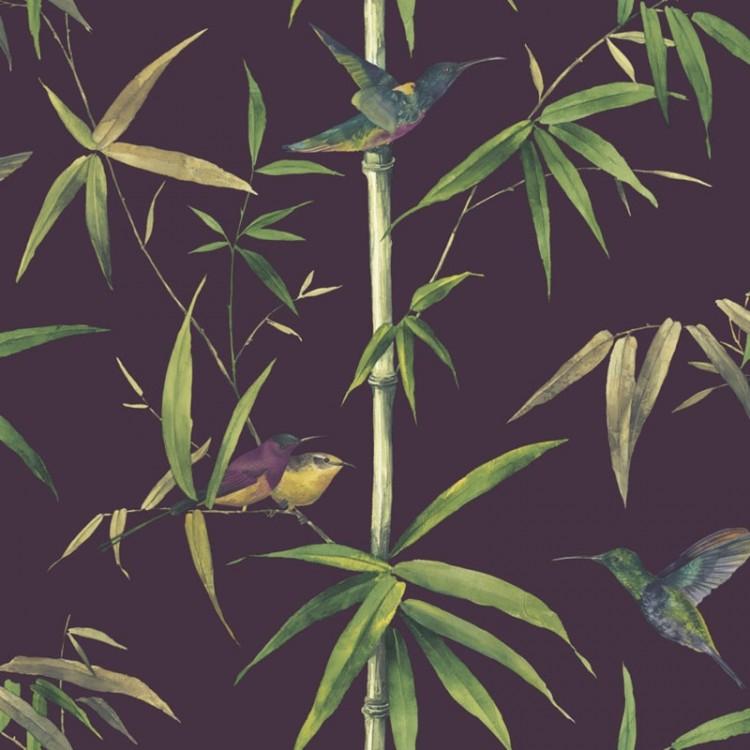 Carta da parati foresta colibrì black