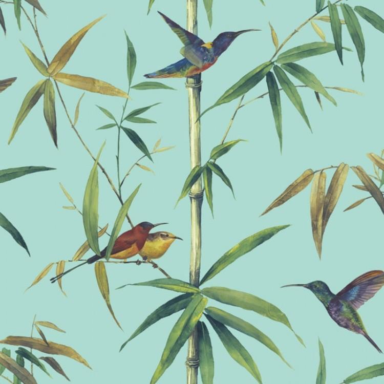 Carta da parati foresta colibrì