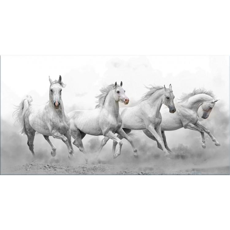 Quadro in tela Cavalli Selvaggi