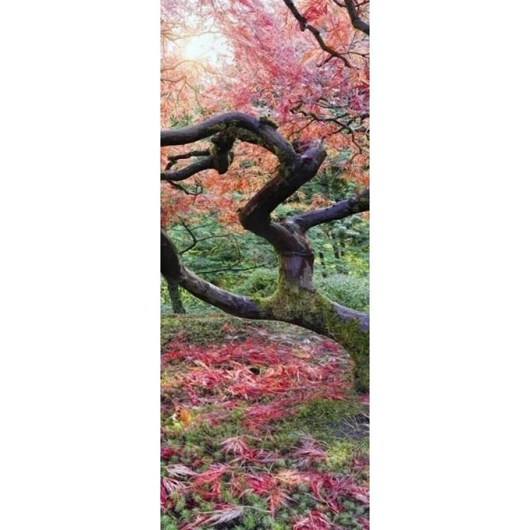 adesivo per porta Acero Giapponese