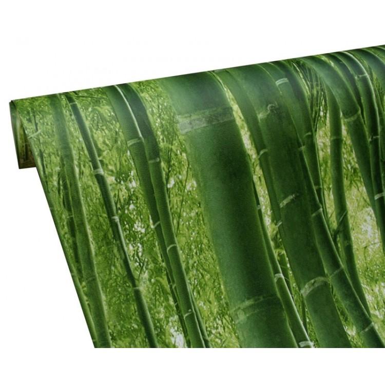 Carta da parati bamboo