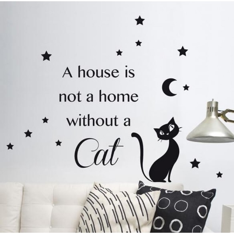 frase adesiva night cat