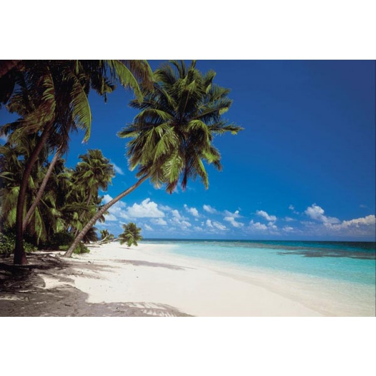 Fotomurale Maldive | cod. 8-240 Komar