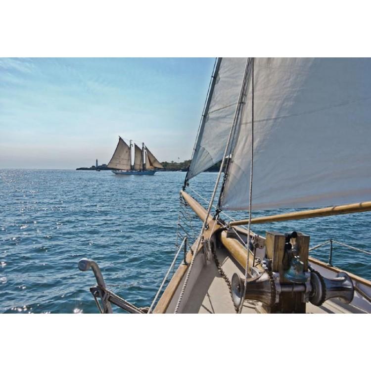 Fotomurale Sailing   cod. 8-526